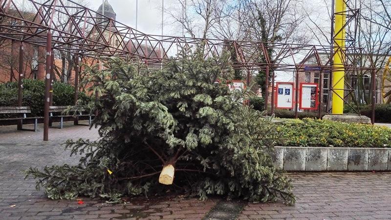Wann werden die weihnachtsbäume abgeholt