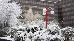 Winterimpressionen von Ahlen